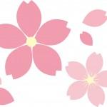 万博記念公園桜まつり2015見頃とライトアップはいつ?混雑情報も